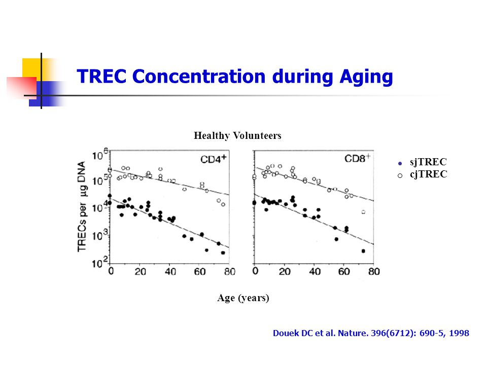 TREC Concentration during Aging
