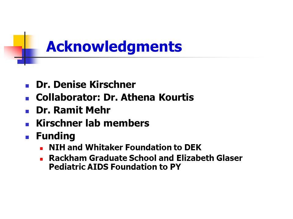 Acknowledgments Dr. Denise Kirschner Collaborator: Dr. Athena Kourtis