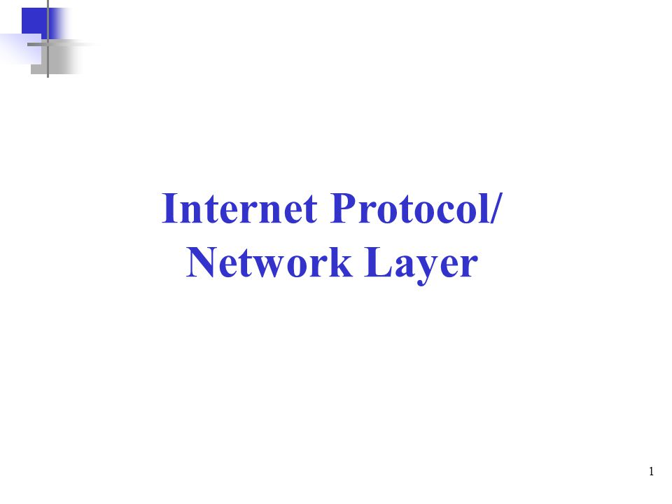 Internet Protocol/ Network Layer