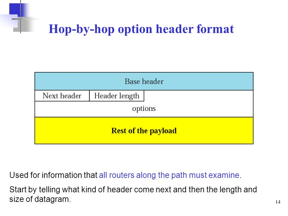 Hop-by-hop option header format