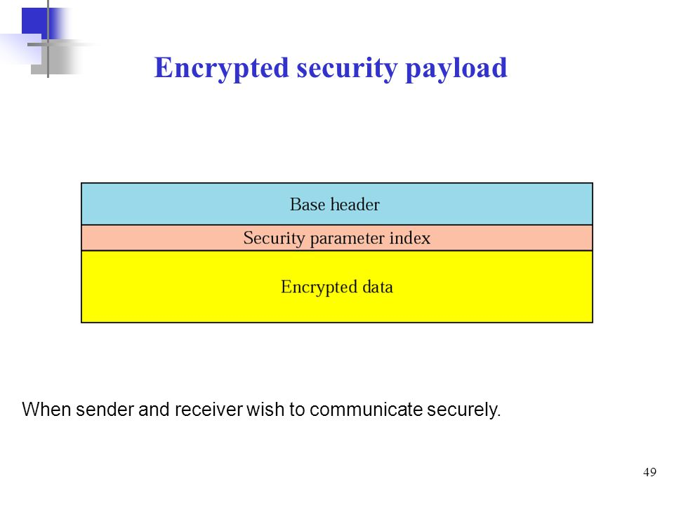 Encrypted security payload