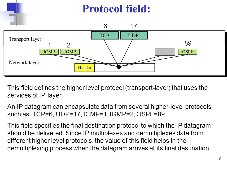 Protocol field: 6. 17. 89. 1. 2. This field defines the higher level protocol (transport-layer) that uses the services of IP-layer.
