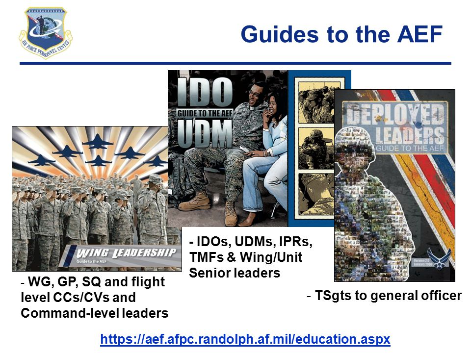 Guides to the AEF - IDOs, UDMs, IPRs, TMFs & Wing/Unit Senior leaders