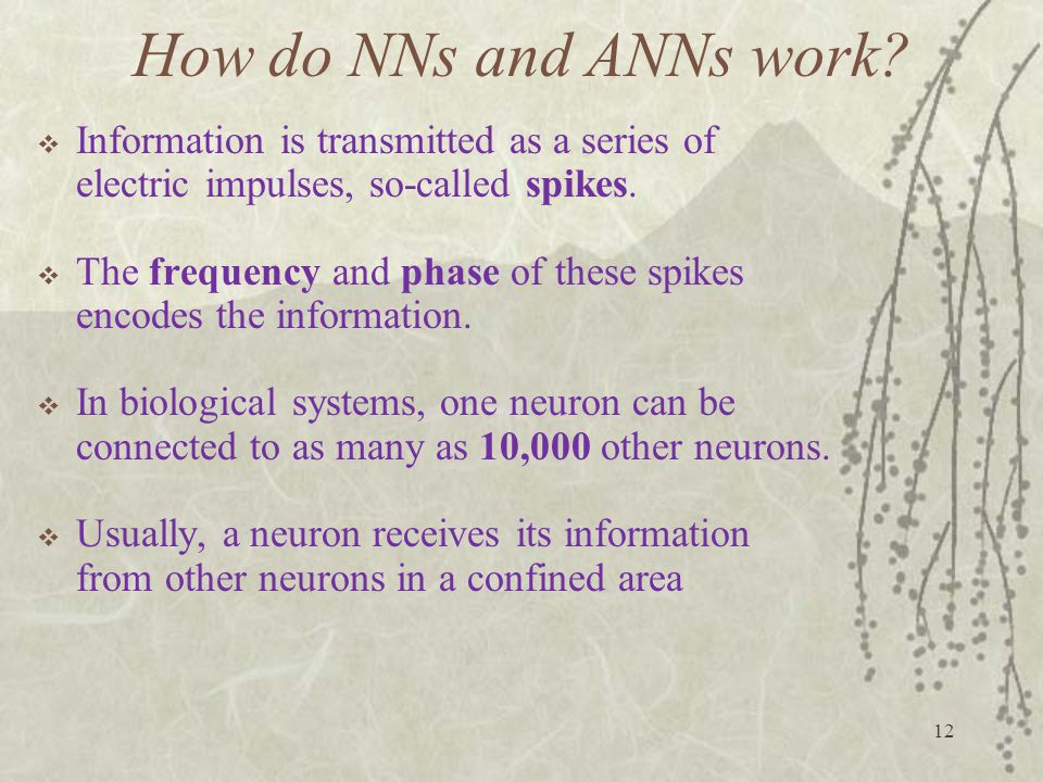 How do NNs and ANNs work Information is transmitted as a series of electric impulses, so-called spikes.