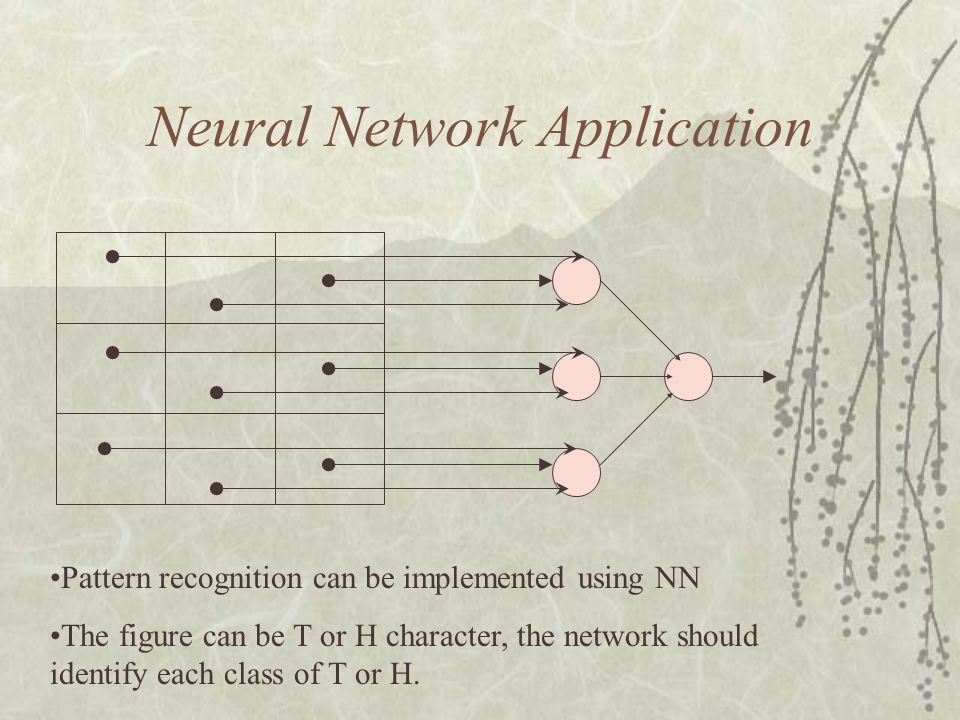 Neural Network Application