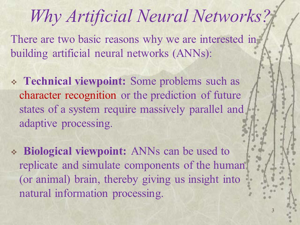 Why Artificial Neural Networks