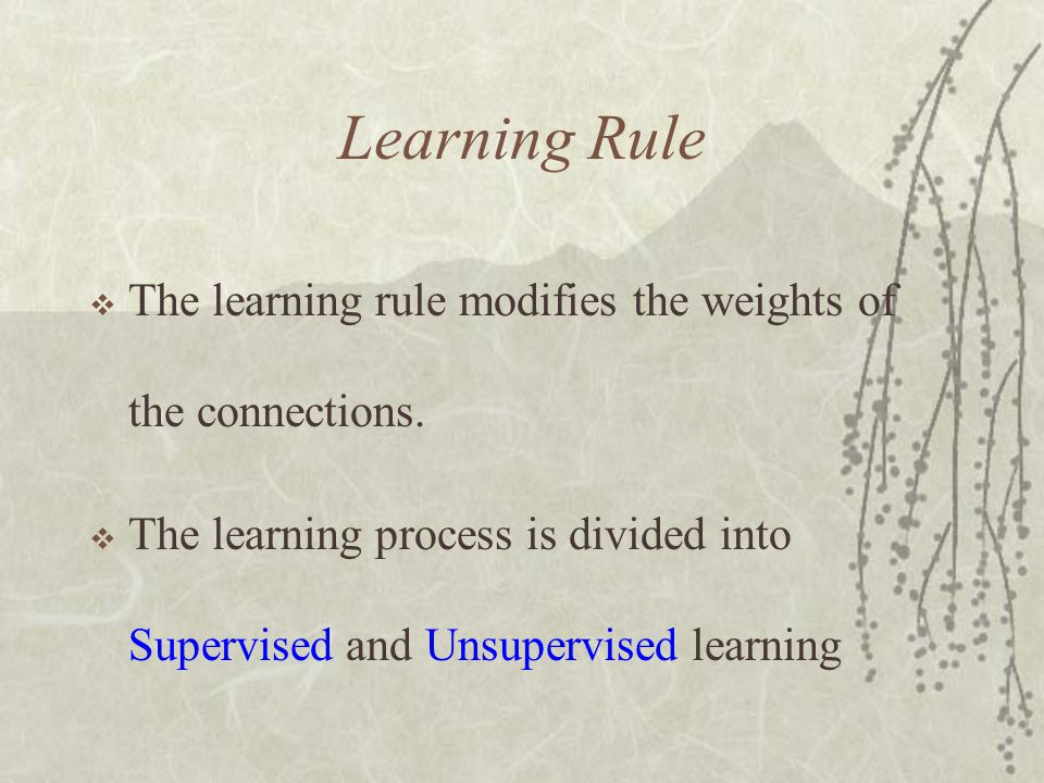 Learning Rule The learning rule modifies the weights of the connections.