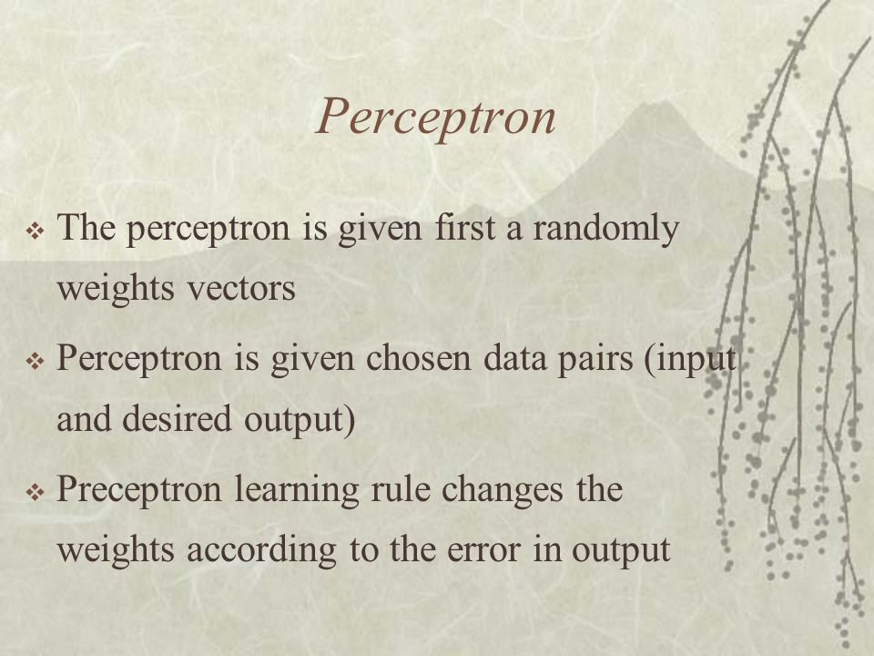 Perceptron The perceptron is given first a randomly weights vectors