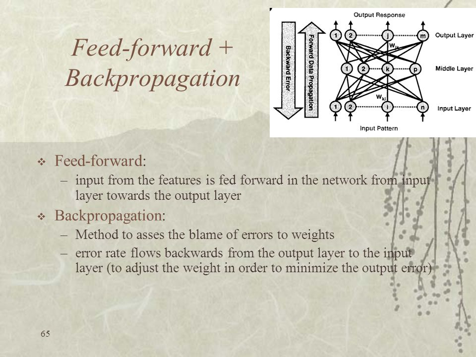 Feed-forward + Backpropagation