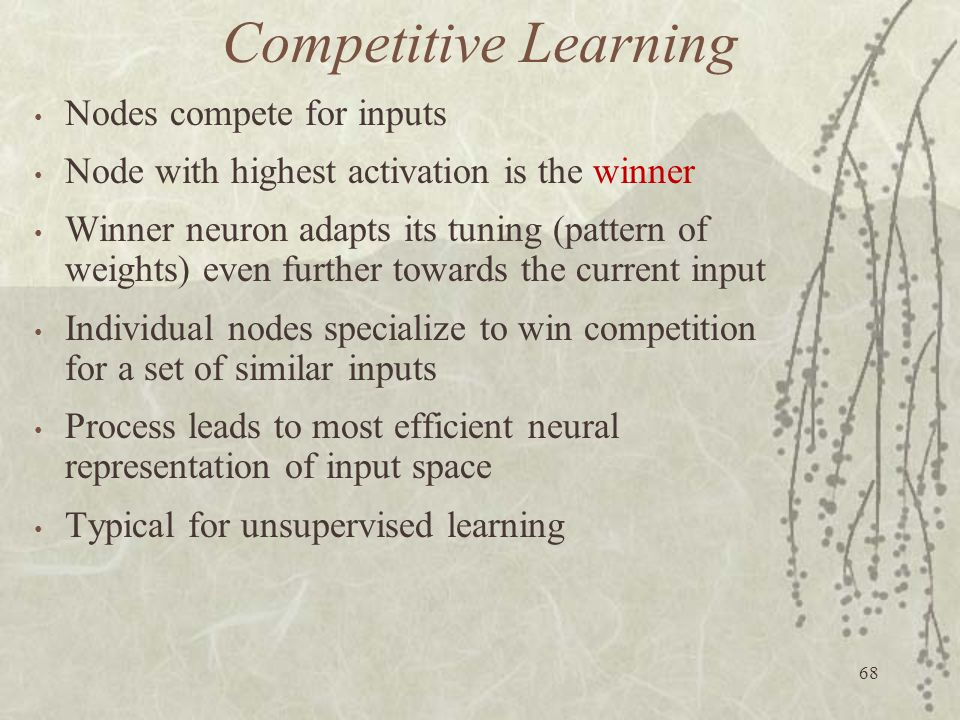 Competitive Learning Nodes compete for inputs