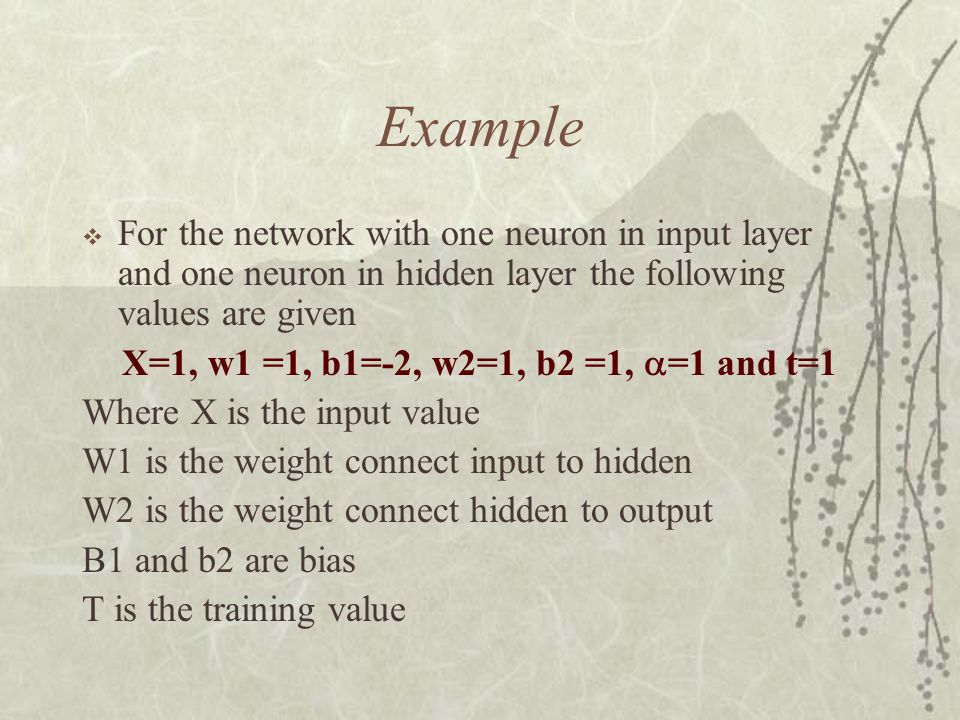 Example For the network with one neuron in input layer and one neuron in hidden layer the following values are given.
