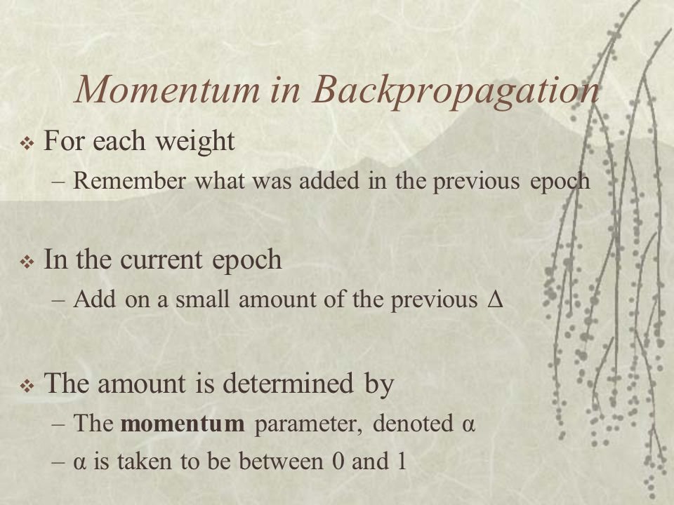 Momentum in Backpropagation