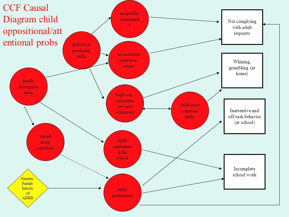 CCF Causal Diagram child oppositional/attentional probs