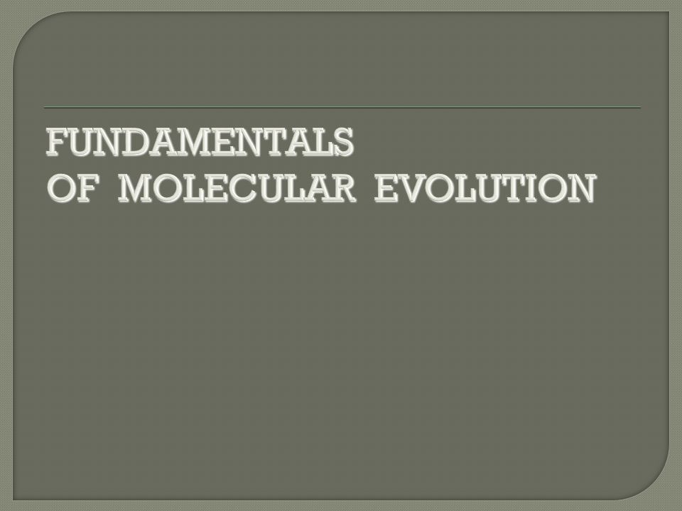 FUNDAMENTALS OF MOLECULAR EVOLUTION