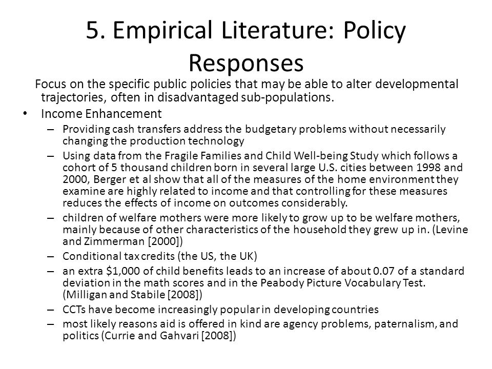 5. Empirical Literature: Policy Responses