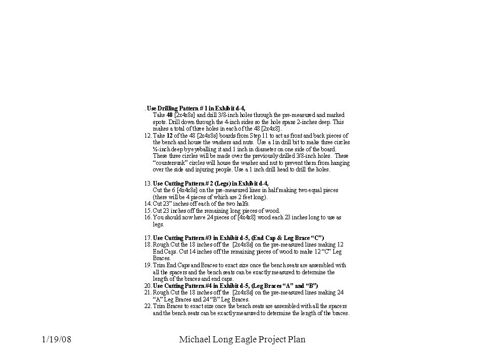 Michael Long Eagle Project Plan