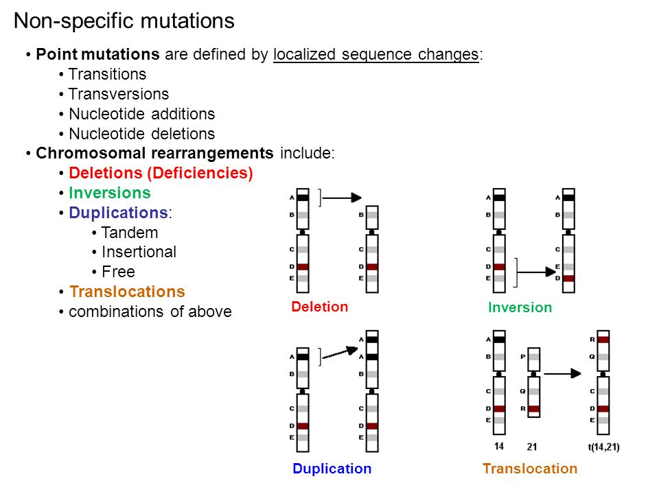 Non-specific mutations