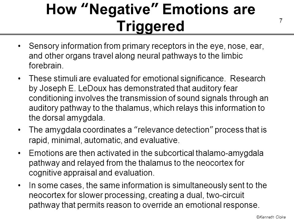 How Negative Emotions are Triggered