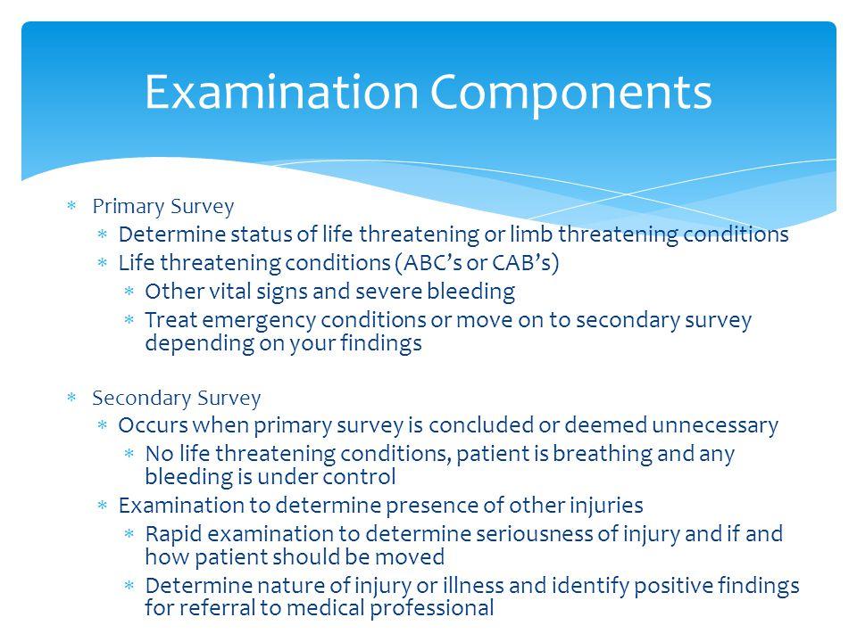 Examination Components