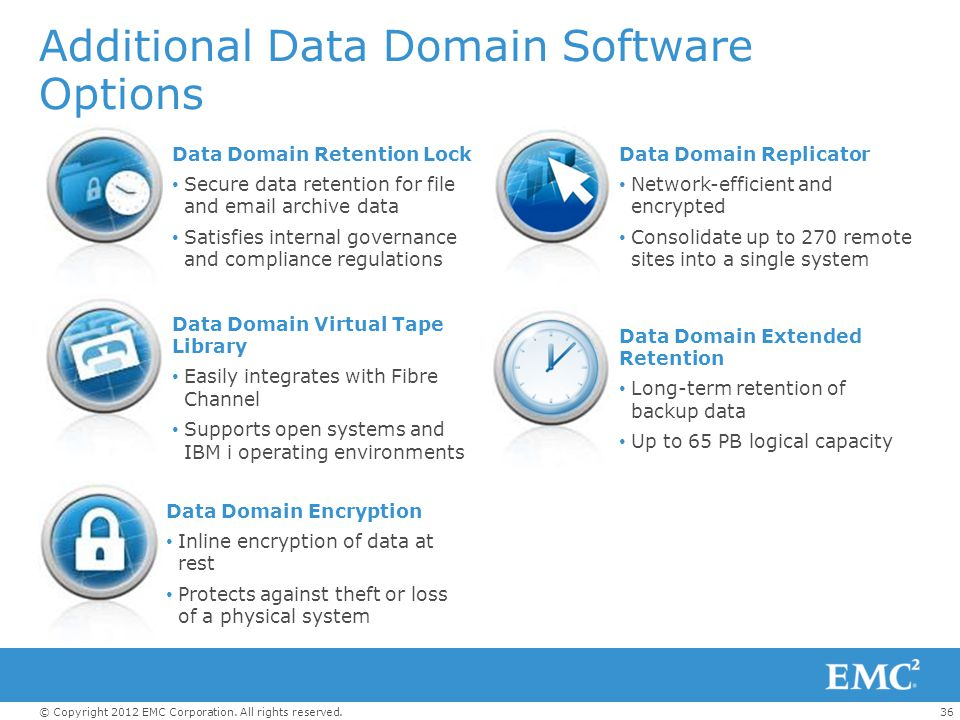 Additional Data Domain Software Options