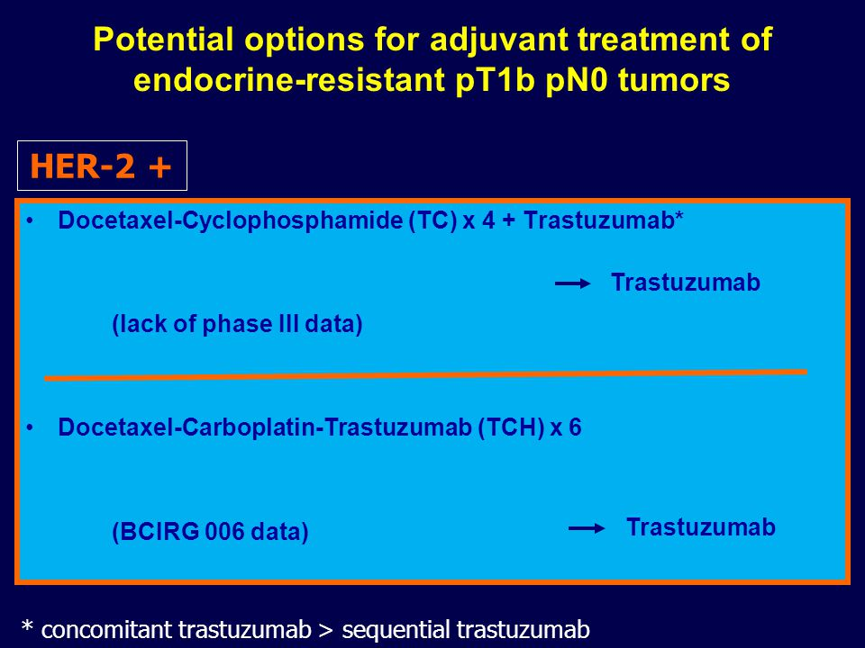 Potential options for adjuvant treatment of endocrine-resistant pT1b pN0 tumors