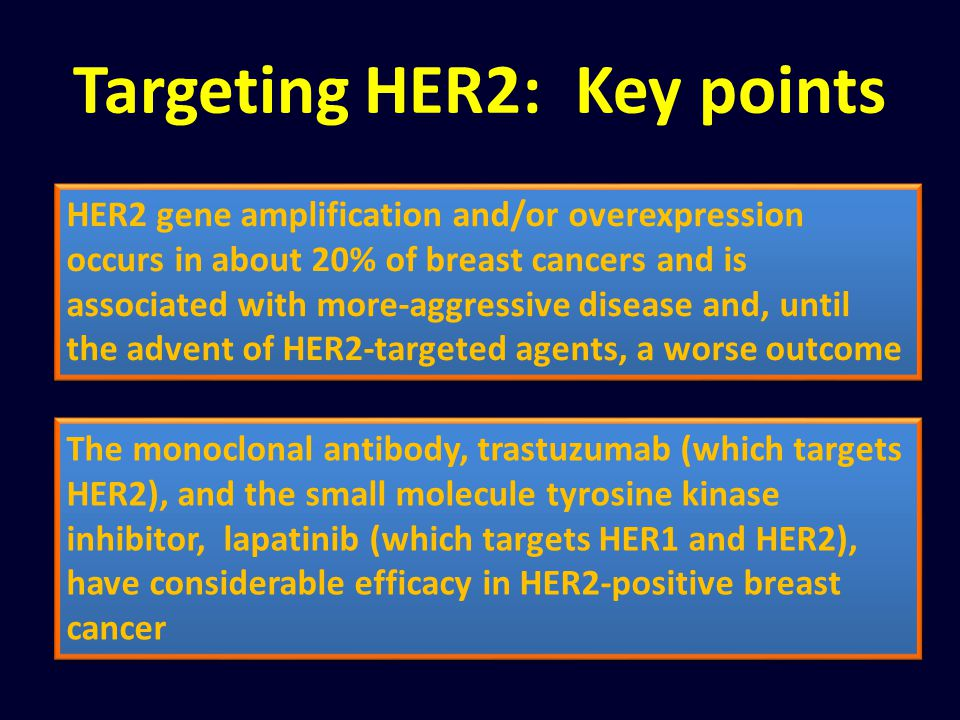 Targeting HER2: Key points
