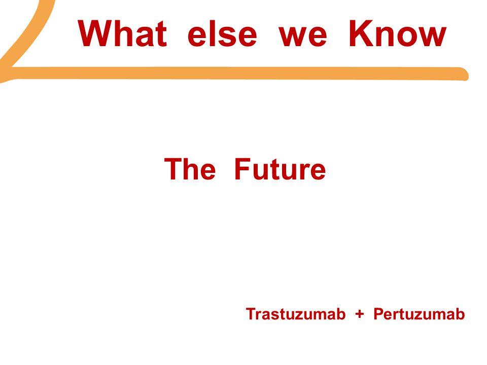 What else we Know The Future Trastuzumab + Pertuzumab