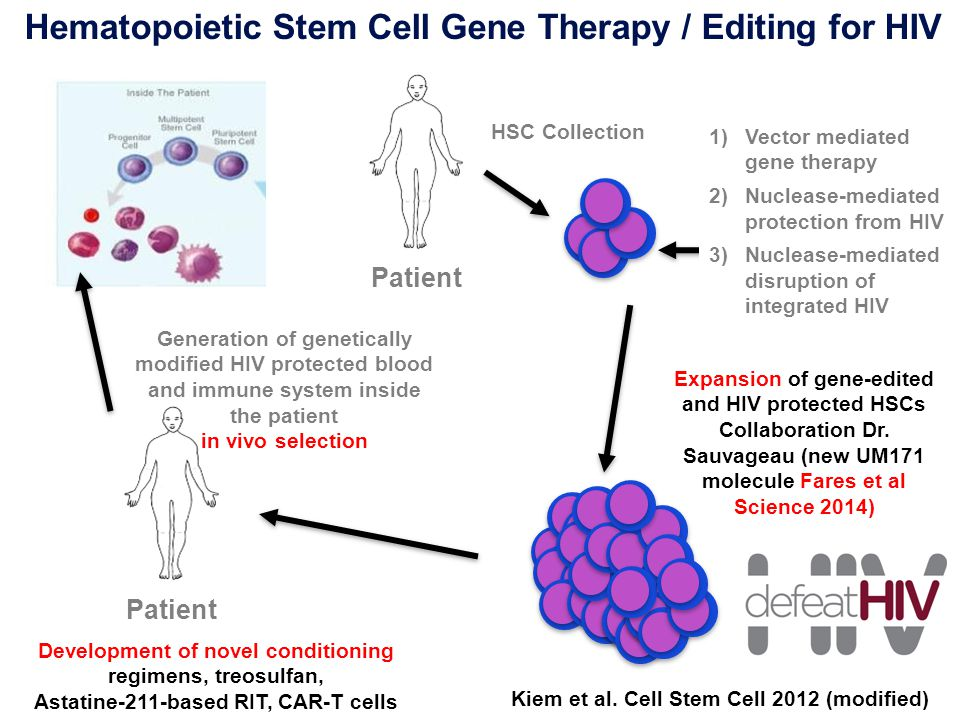 Hematopoietic Stem Cell Gene Therapy / Editing for HIV