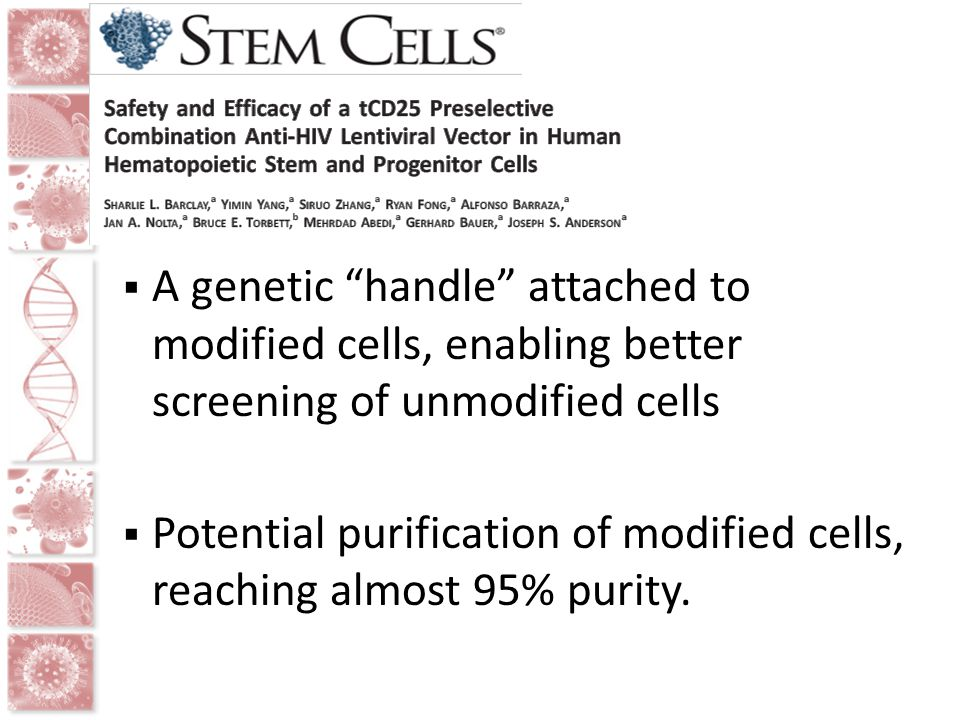 Potential purification of modified cells, reaching almost 95% purity.