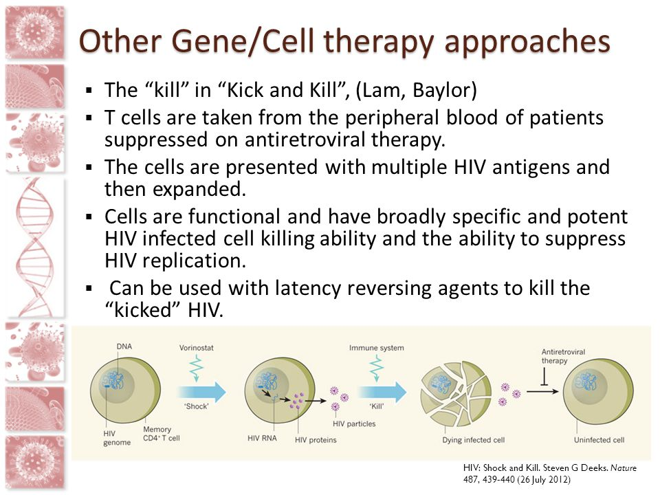 Other Gene/Cell therapy approaches