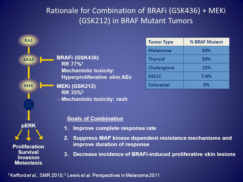 Rationale for Combination of BRAFi (GSK436) + MEKi (GSK212) in BRAF Mutant Tumors
