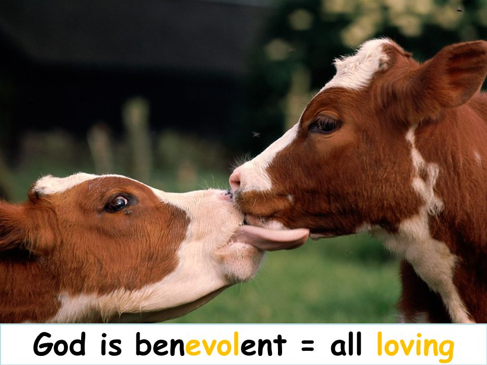 God is benevolent = all loving