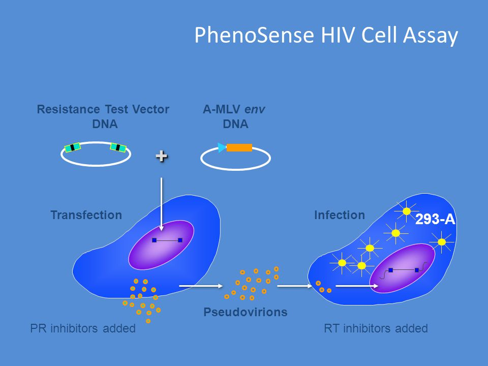 PhenoSense HIV Cell Assay
