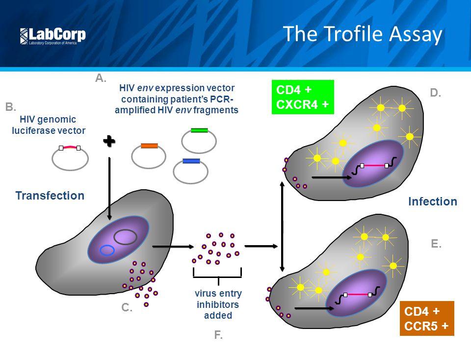 virus entry inhibitors added