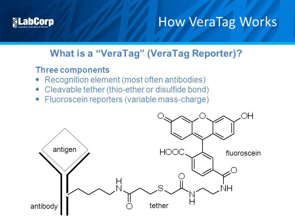 What is a VeraTag (VeraTag Reporter)