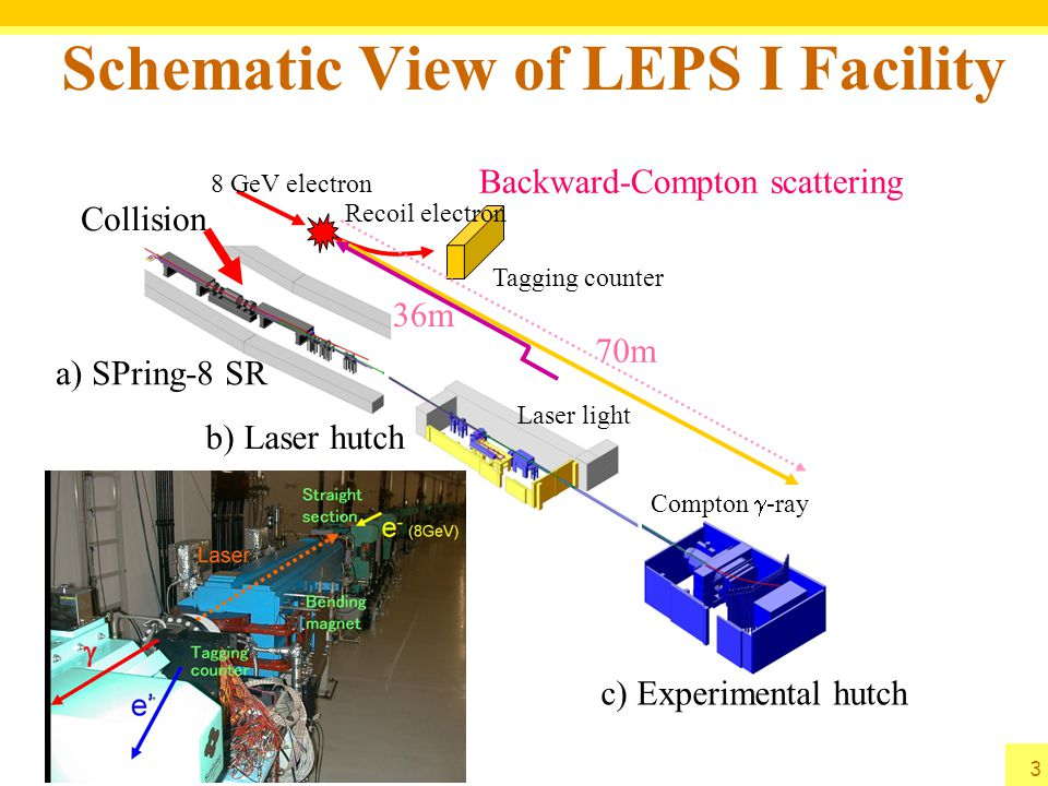 Schematic View of LEPS I Facility