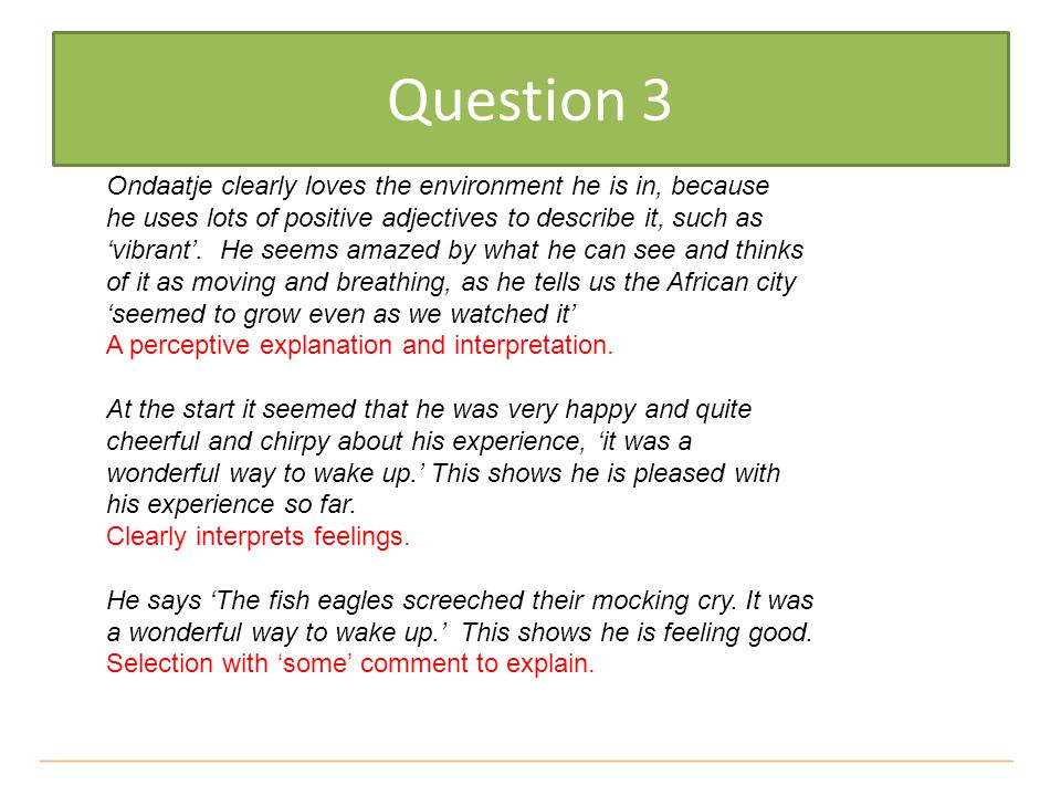Question 3 Ondaatje clearly loves the environment he is in, because