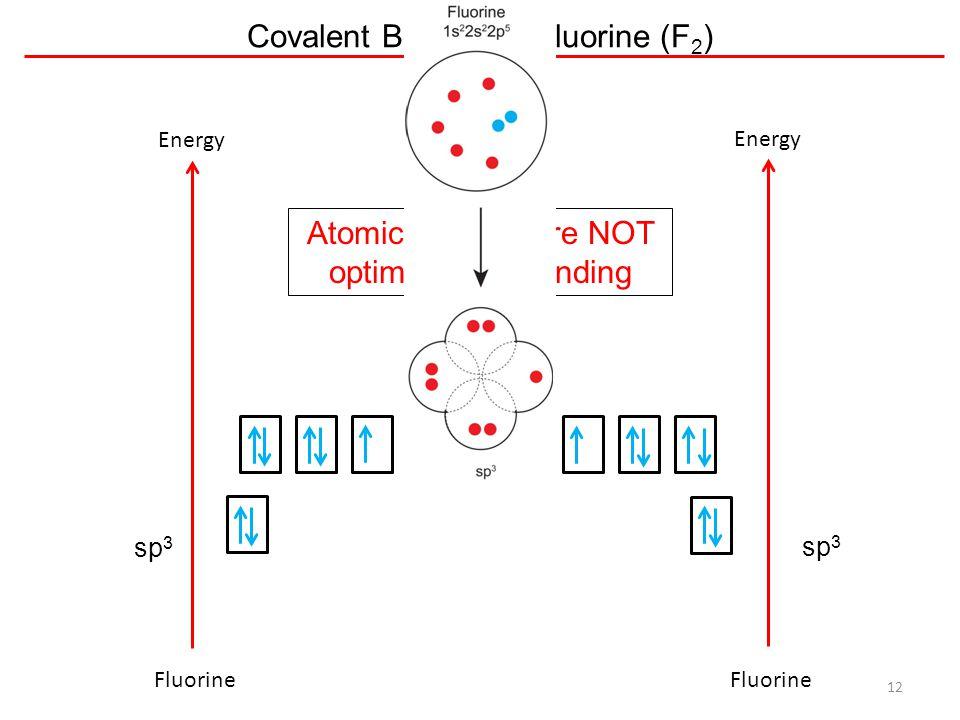 Covalent Bonding – Fluorine (F2)