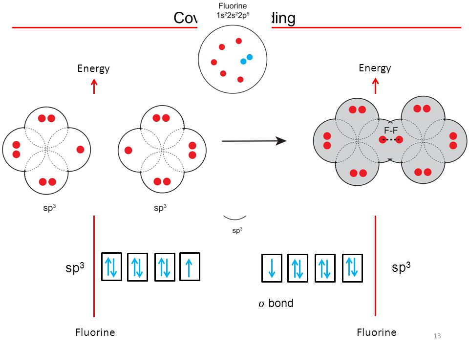 Covalent Bonding Energy Energy sp3 sp3 s bond Fluorine Fluorine