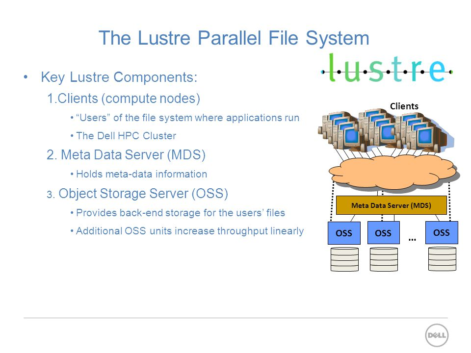 The Lustre Parallel File System