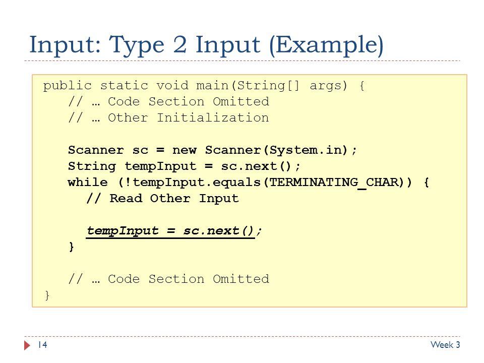 Input: Type 2 Input (Example)