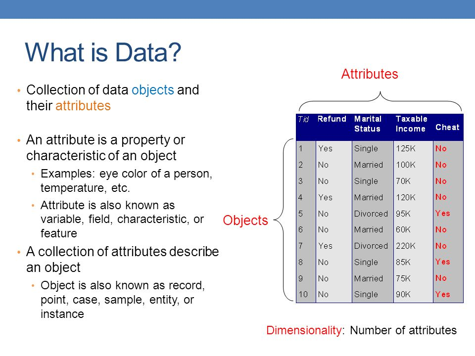 What is Data Attributes