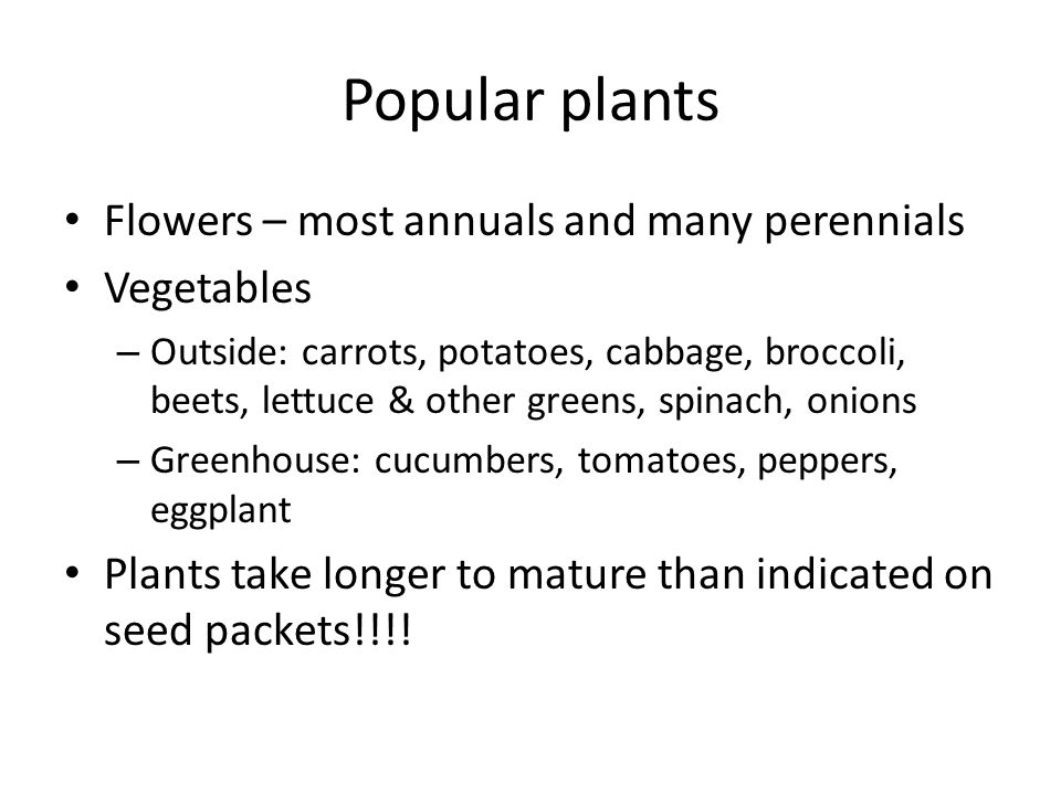 Popular plants Flowers – most annuals and many perennials Vegetables