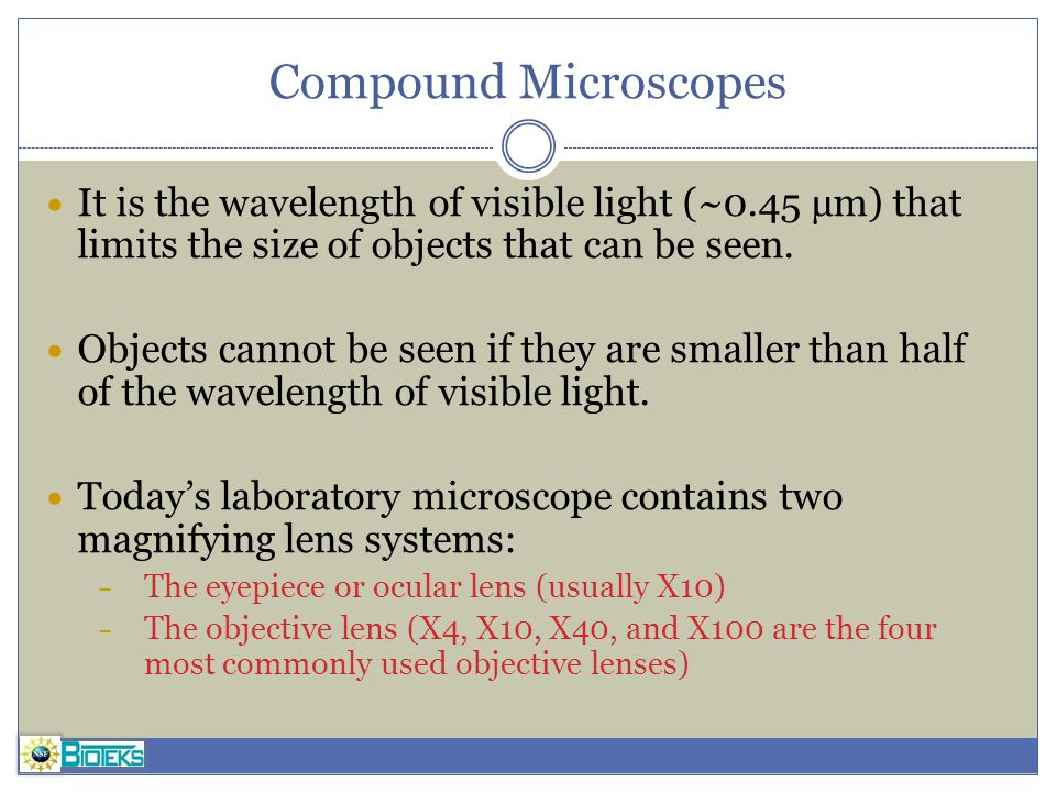 Compound Microscopes It is the wavelength of visible light (~0.45 µm) that limits the size of objects that can be seen.