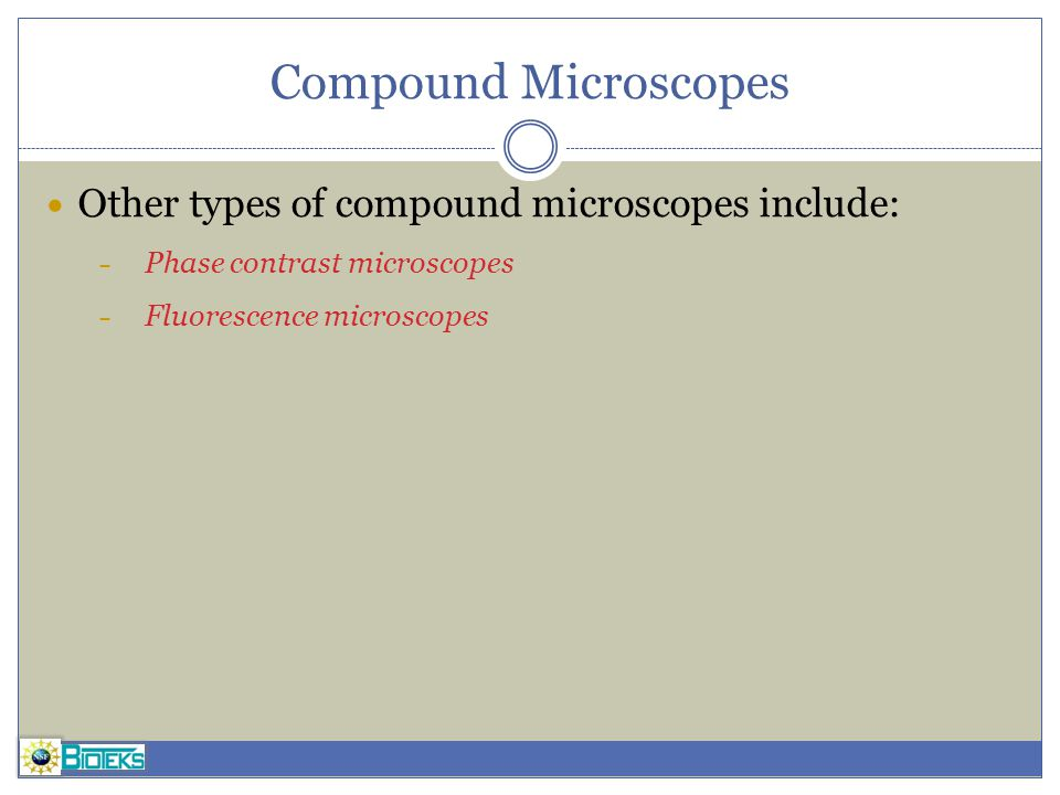 Compound Microscopes Other types of compound microscopes include: