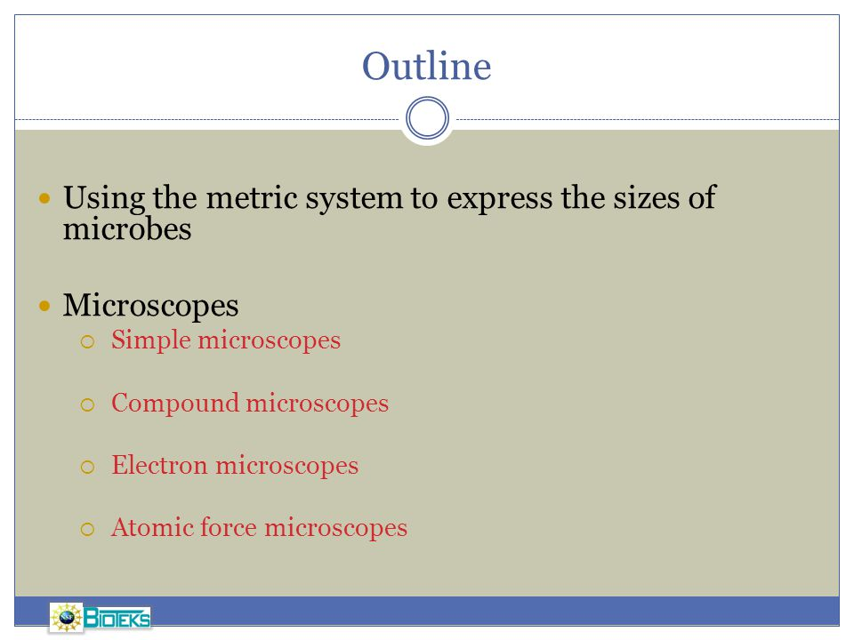 Outline Using the metric system to express the sizes of microbes