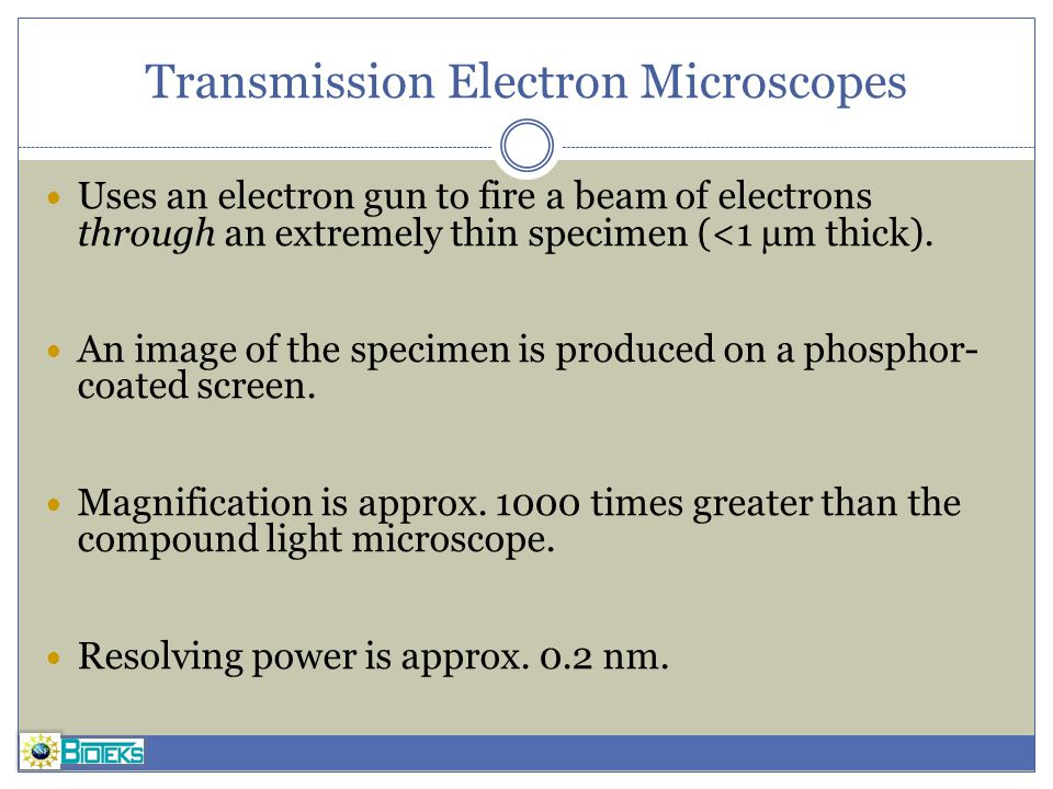 Transmission Electron Microscopes