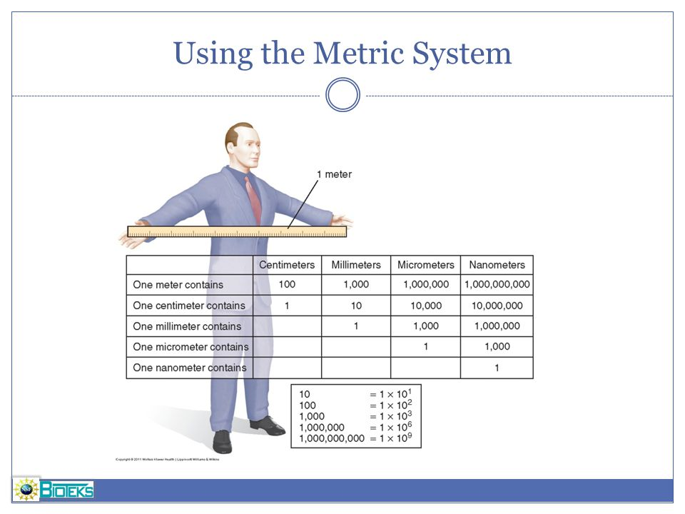 Using the Metric System