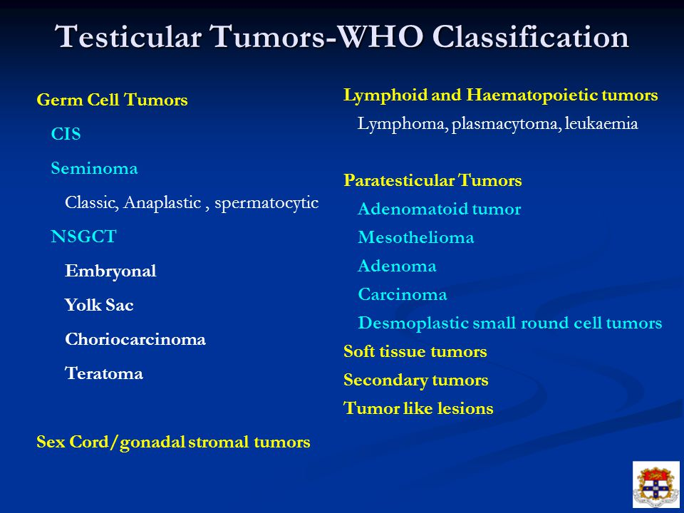 Testicular Tumors-WHO Classification