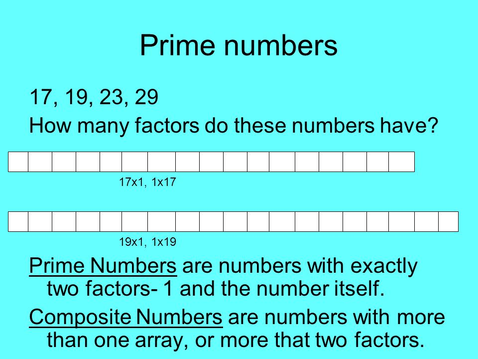 Prime numbers 17, 19, 23, 29 How many factors do these numbers have